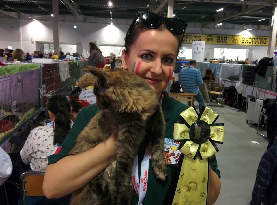 Felix Coon Agita World Cat Show Malmo 2015