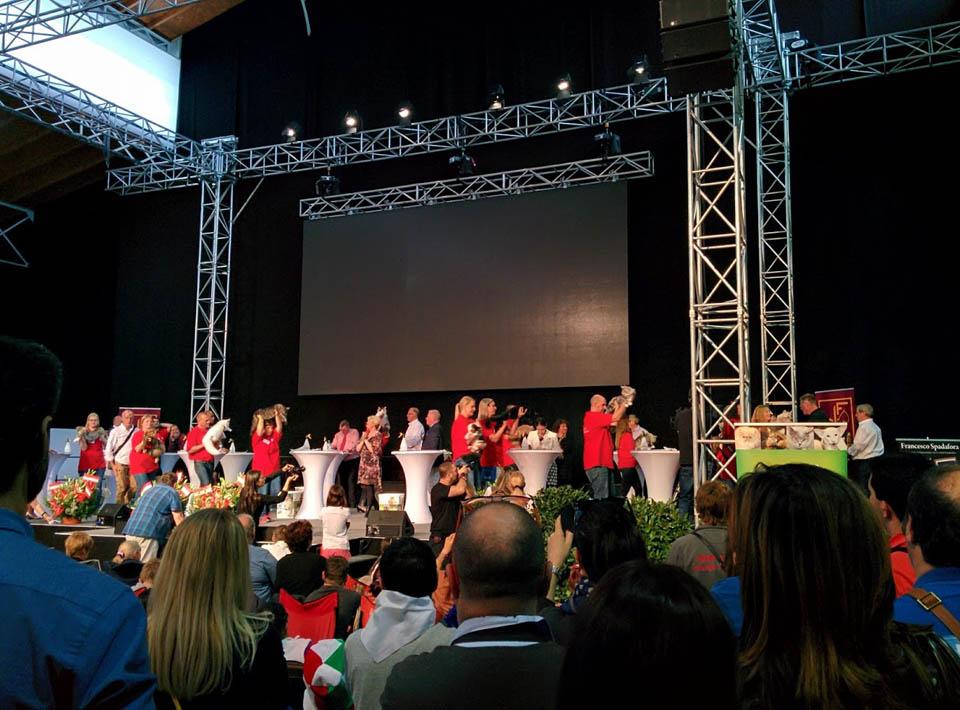 Ruffians Big Boy Nomination World Show 2016 Austria