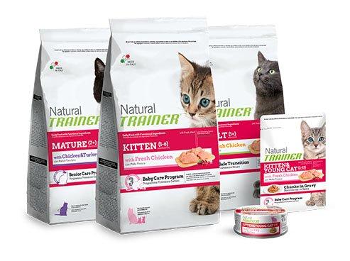cat range pack natural trainer