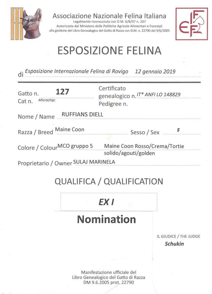 2019 Jan 12 Rovigo Ruffians Diell Ex1 Nomination