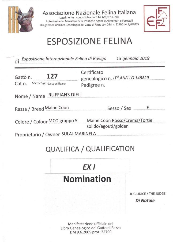 2019 Jan 13 Rovigo Ruffians Diell Ex1 Nomination