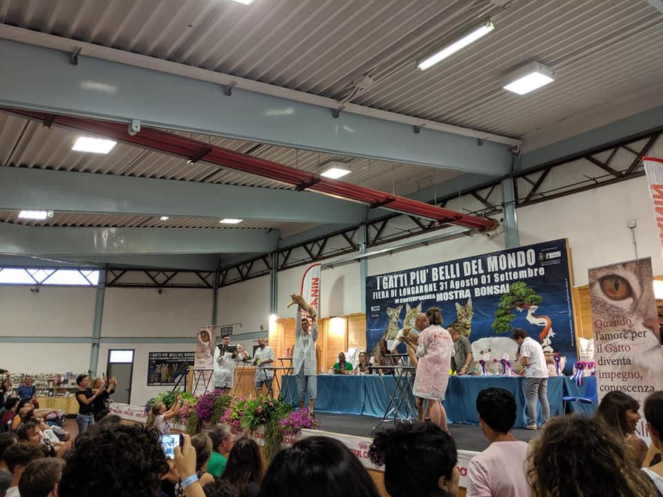 Ruffians Ecuador - Best in Show
