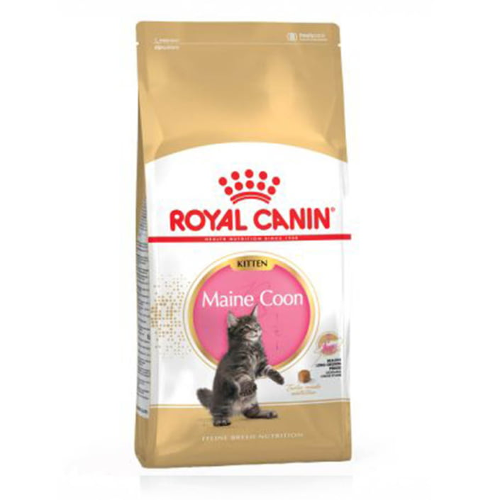 Royal Canin for Kitten Maine Coons